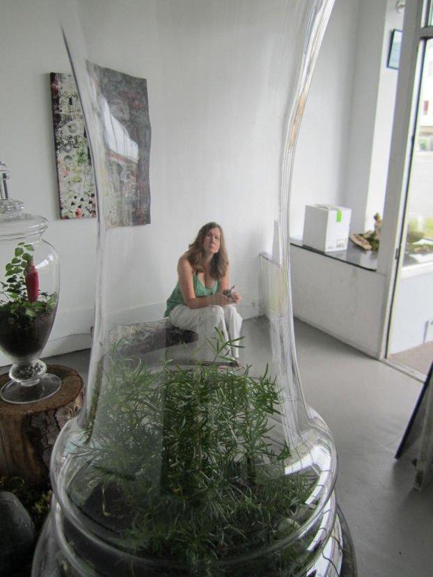 my terrariums